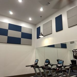EVEN GYM'S NEED ACOUSTICAL PANELS…